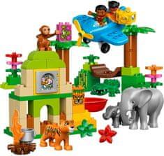 LEGO® DUPLO 10804 Dżungla