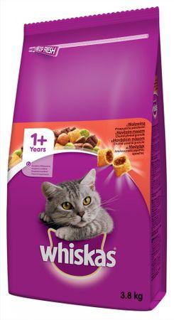 Whiskas sucha karma dla kota z wołowiną 3,8 kg