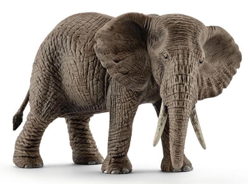 Schleich Slon africký samice 14761