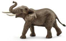 Schleich Wild Life: Afriški slon, samec