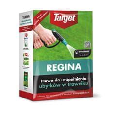 Target trawa do uzupełniania ubytków w trawniku 1kg