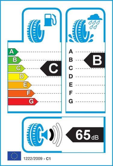 Hankook auto guma Ventus S1 evo2 K117 225/50 R17 94 Y AO