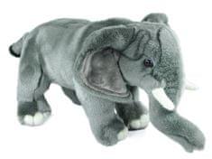 Rappa Pluszowy słoń 40 cm