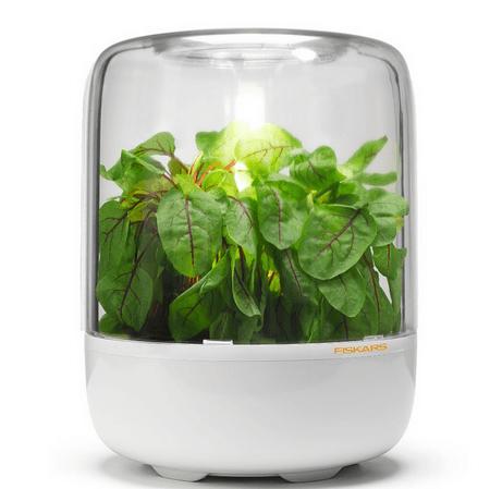 Fiskars kuhinjski rastlinjak za začimbe KitchenGarden Basic (1003453)