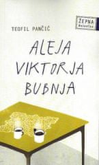 Teofil Pančić: Aleja Viktorja Bubnja