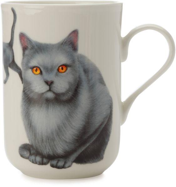 Maxwell & Williams Cashmere Pets Cat Karthauser hrnek 300 ml