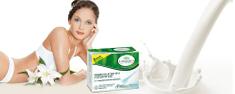 L'Angelica prehransko dopolnilo mlečnokislinske bakterije, 12 vrečk
