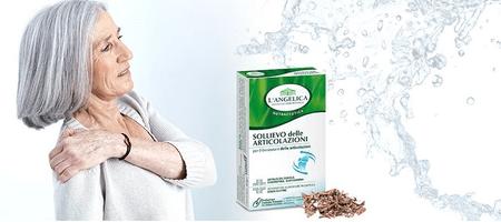 L'Angelica prehransko dopolnilo zdravje sklepov, 40 tablet