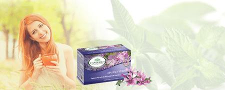 L'Angelica zeliščni čaj gozdni slezenovec, 15 vrečk