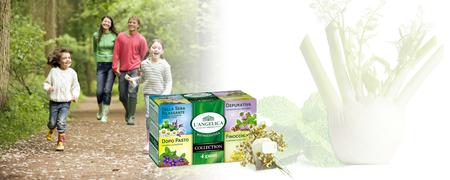 L'Angelica zeliščni čaj Mix 4v1, 20 vrečk