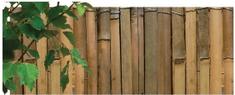 NOHEL GARDEN mata z bambusa 2 x 5 m