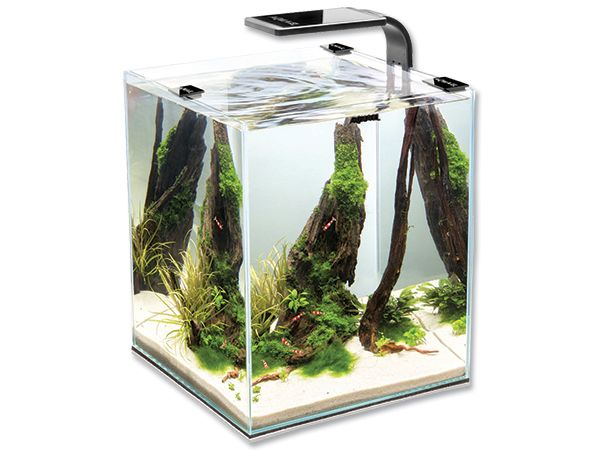 AQUAEL Akvárium set Shrimp Smart 20 x 20 x 25cm 10 l