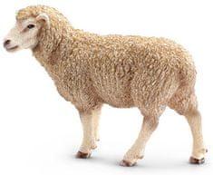 Schleich Figurka Owca 13743