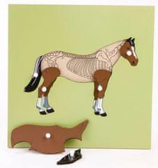 Montessori sestavljanka - konj