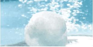 MAKERS filtrirne kroglice AQUALOON