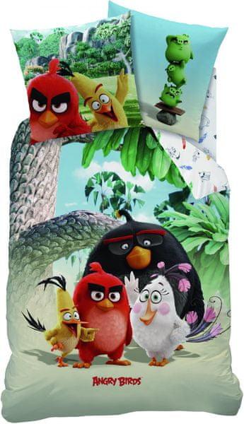 CTI Angry Birds Palm Beach