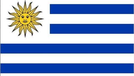Urugvaj zastava (3653)