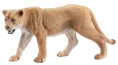 Schleich Wild Life: levinja