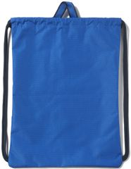 Adidas športna torba Linear Performance AY5838, modra
