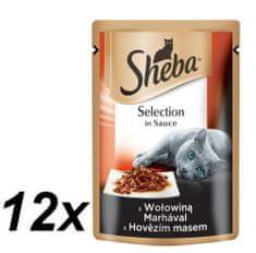 Sheba hrana za odrasle mačke Selection in Sauce, govedina, 12 x 85 g