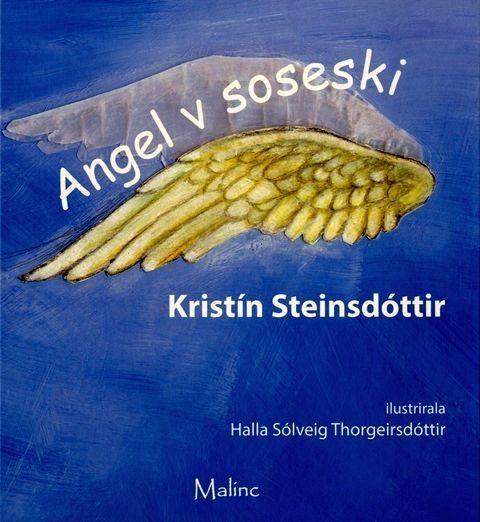 Kristín Steinsdóttir: Angel v soseski