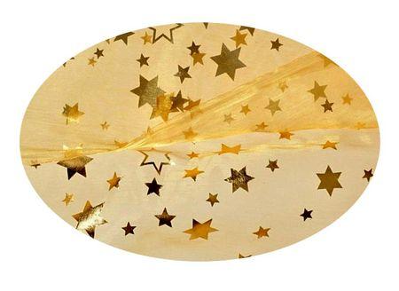 EverGreen Dekorační organza hvězdy 2 x 1,5 m