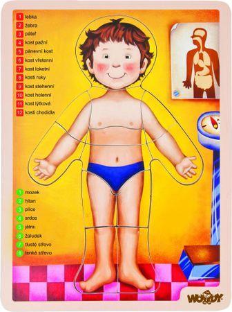 Woody Puzzle - ludzkie ciało