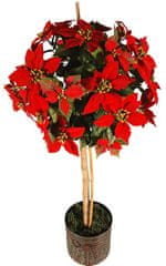 EverGreen Poinsettia stromek