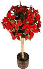 EverGreen Poinsettia stromek