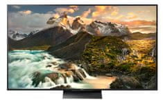 Sony 4K HDR LED TV KD-65ZD9B