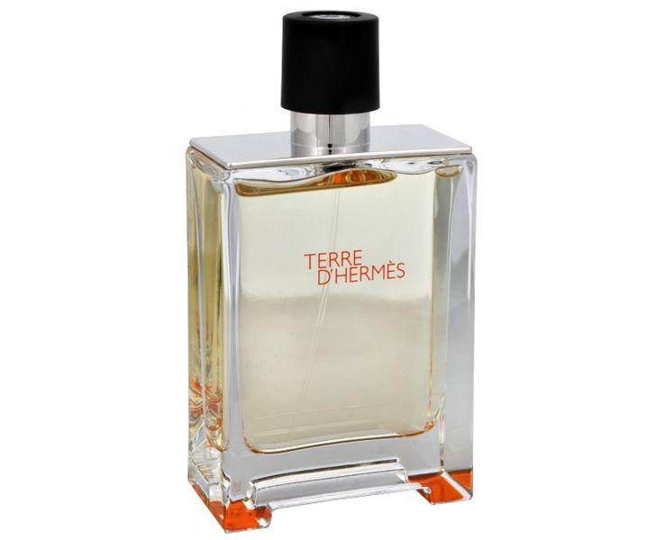 Hermès Terre D´ Hermes - toaletní voda s rozprašovačem - TESTER 100 ml