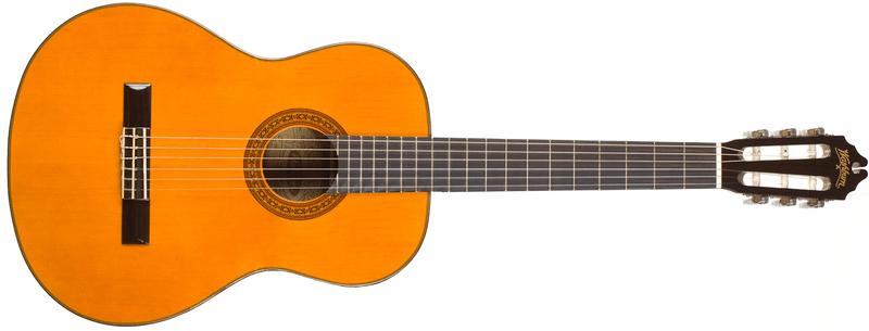 Washburn C40 Klasická kytara