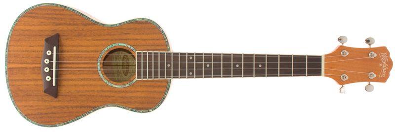 Washburn U50 Akustické ukulele