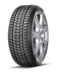 Sava pnevmatike Eskimo HP 2 205/55R16 91H