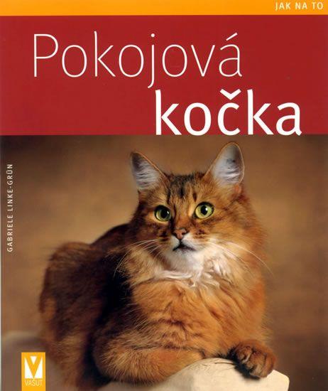 Linke-Grün Gabriele: Pokojová kočka - Jak na to