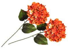 EverGreen Hortenzia veľkokvetá 2 ks ohnivá