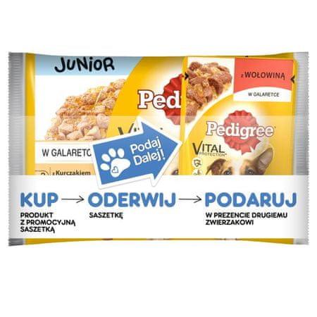 Pedigree saszetki dla psa Junior kurczak ryż/wołowina ryż 36+ 9 Gratis
