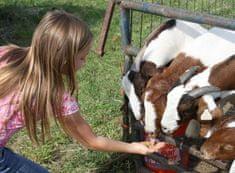Poukaz Allegria - na farmu za zvířaty