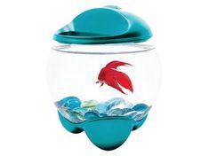 Tetra Akvárium Betta Bubble modrá 1,8l