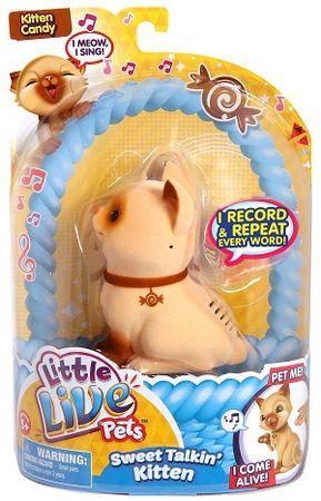 Little Live Pets muca Kitten Candy S2