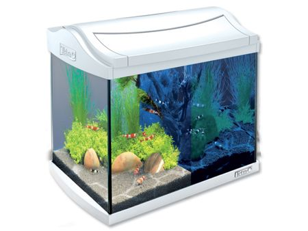 Tetra Akwarium set AquaArt LED białe 20l