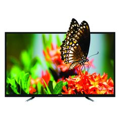 Manta LED TV LED5501