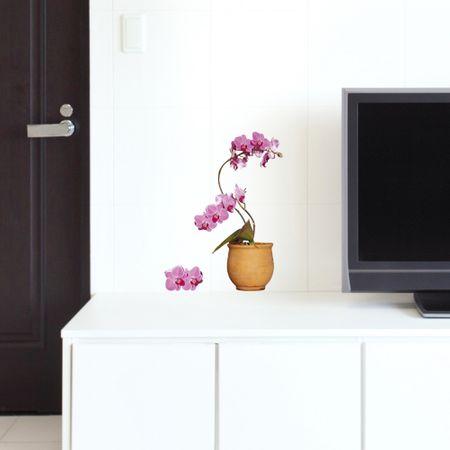 Crearreda stenska nalepka Orhideja S