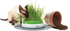 Hagen Trawnik CAT IT Design Senses 2.0