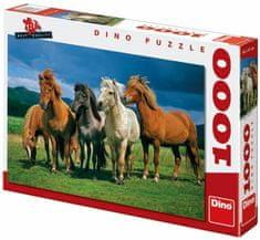 DINO Puzzle Islandské kone, 1000 dielikov