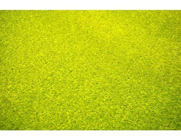 Kusový zelený koberec Eton 200x300 cm