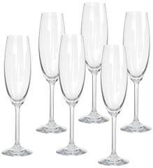 Banquet kieliszek do szampana Degustation 280 ml, 6 szt