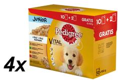 Pedigree Junior saszetki multipack 4 x (12 x 100g)