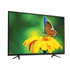 Manta LED TV prijemnik LED4801