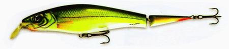 Goldy wobler Extra Bite GK hlboko potápavý 14 cm, 24 g